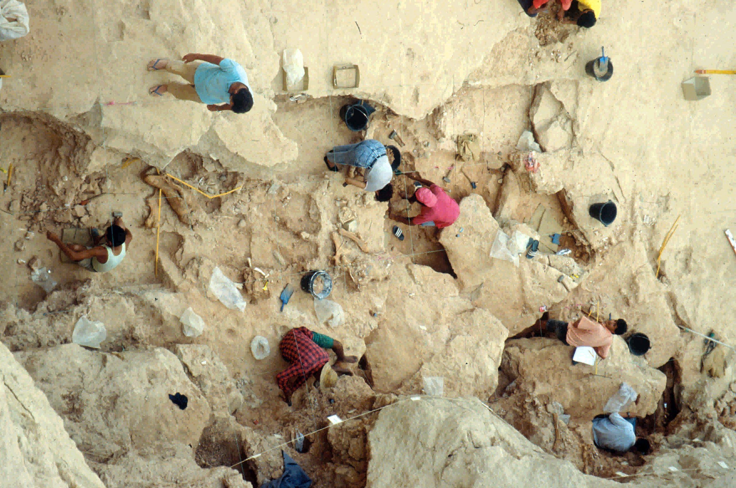 صورة 1 منظر لموقع مغارة وحيدي القرن مكان اكتشاف العظام التي تحتفظ بآثار الجزارة (مقلع أولاد حميدة 1، الدارالبيضاء).جون بول راينال