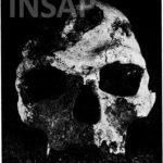 Le-crâne-n°5-de-Dar-Es-soltane-II-vue-faciale